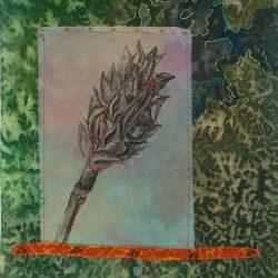 Botanical-Remnants_Magnolia_huffman